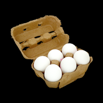 Eieren 6 stuks